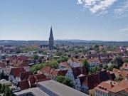 Mitpflanzen - Osnabrück bepflanzen!