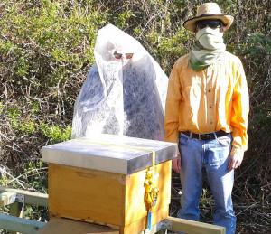 Oberbiene Maja Kersten (Inhaberin von Blumen Kersten) und Ulrich V oss (1. Vorsitzender von TomatOS e.V.) hießen an einem sonnigen Sonntagmorgen das Bienenvolk willkommen.