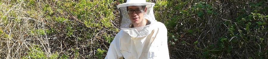 Die Bienen sind da!