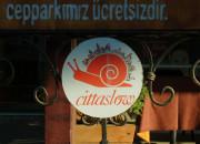 brücker Partnerstadt Çanakkale.