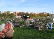 Gemeinschaftsgärten in Berlin (Herbst 2013)