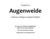 Augenweide goes Kunsthalle!